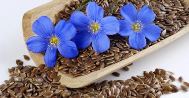 Льняное семя противопоказания