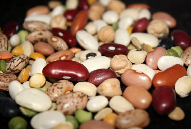 Фасоль, полезные свойства, противопоказания, состав и другое