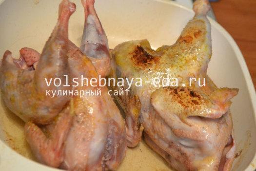 cyplenek-na-moloke-4