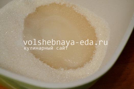 domashnjaja-sgushhenka-2