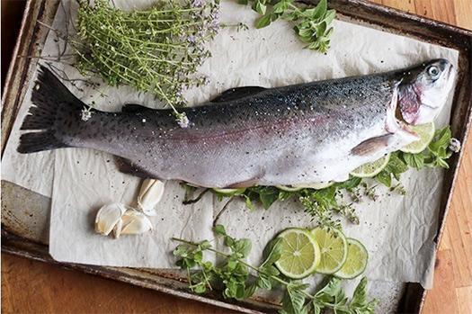 specii-dlja-ryby-3