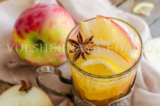 vitaminnyj-napitok-s-oblepihoj-i-badjanom-10