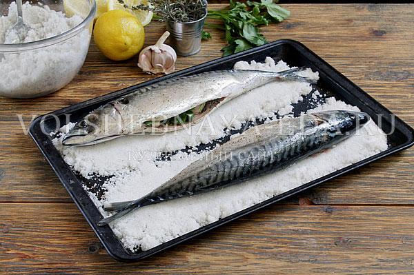 ryba v soli v duxovke 4
