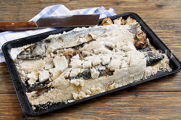 ryba v soli v duxovke 8
