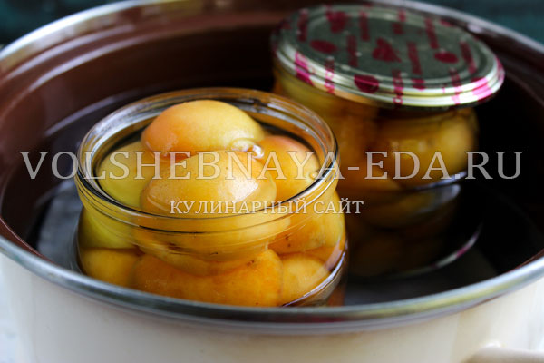 abrikosy v sirope 4