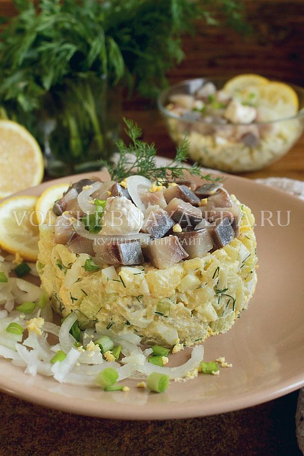 salat norvezhskij s seldyu 10