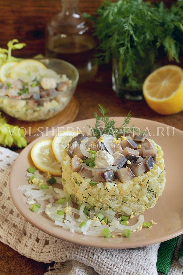 salat norvezhskij s seldyu 12