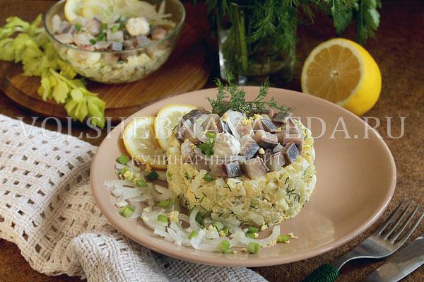 salat norvezhskij s seldyu 14
