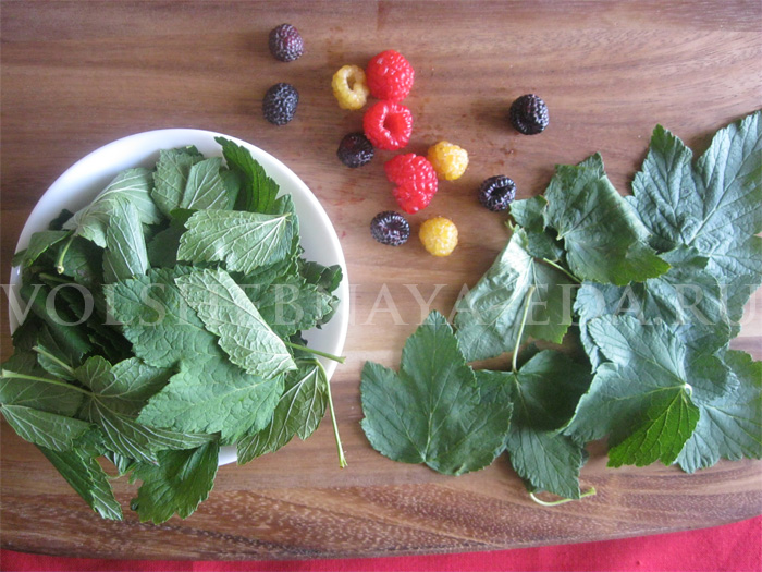 лечебные свойства малины