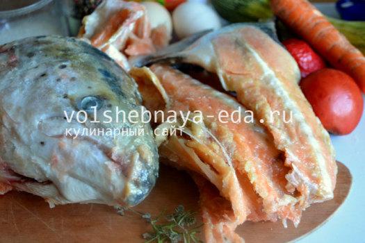 zalivnoe-ryba1