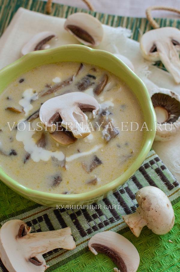 gribnoj sup s syrom i slivkami 13