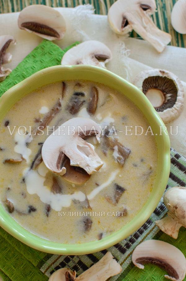 gribnoj sup s syrom i slivkami 16