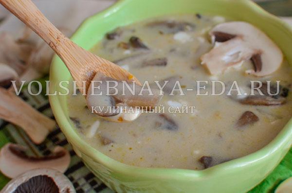 gribnoj sup s syrom i slivkami 17