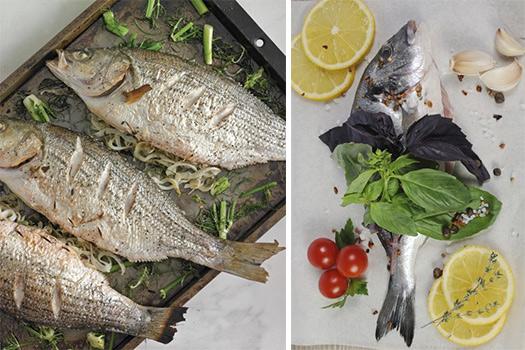 specii-dlja-ryby-2