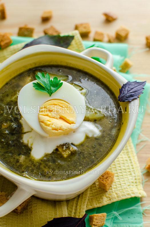 zelenyj-borshh-s-sousom-pesto-14
