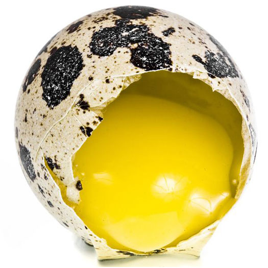 perepelinye-jajca-1