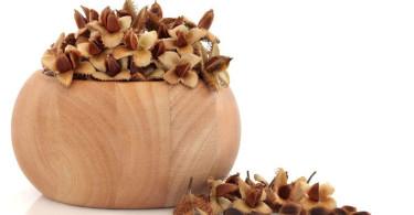 Буковые орехи: свойства, польза, вред