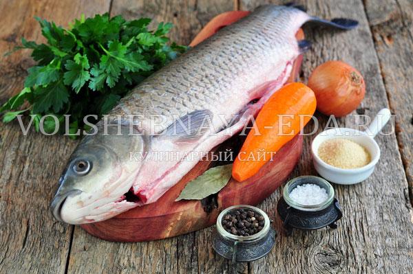 aspic fish 1