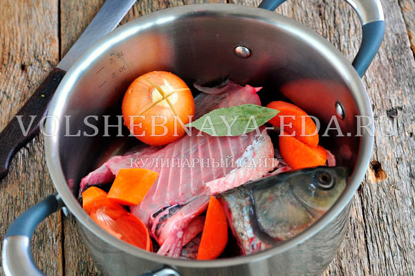 aspic fish 4