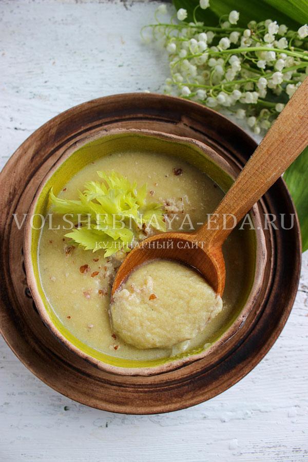 kurinyj sup pyure s seldereem 10