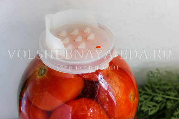 pomidory s morkovnoj botvoj 4