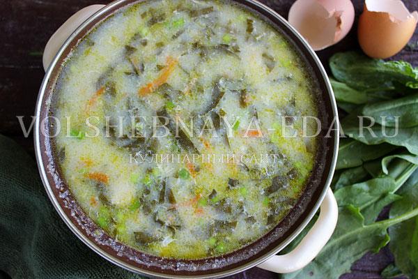 shchavelevyj sup 6