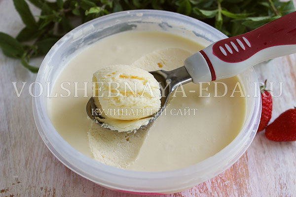 klassicheskoe vanilnoe morozhenoe 8