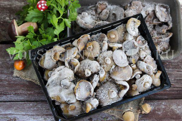 Как заморозить белые грибы на зиму рецепты правильного приготовления