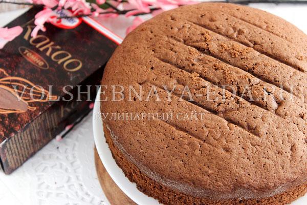 shokoladnyj biskvit s kakao 11