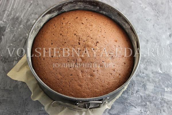 shokoladnyj biskvit s kakao 8
