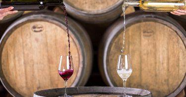 10 фактов о вине