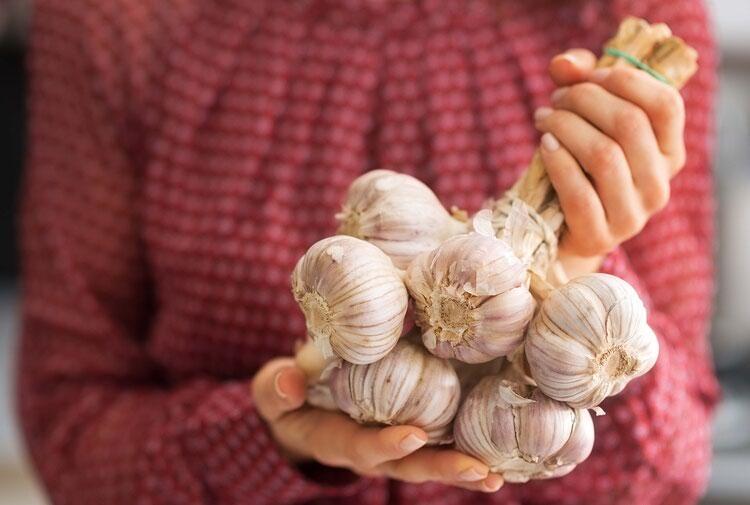 Что полезнее - лук или чеснок для здоровья человека? Полезные свойства культур