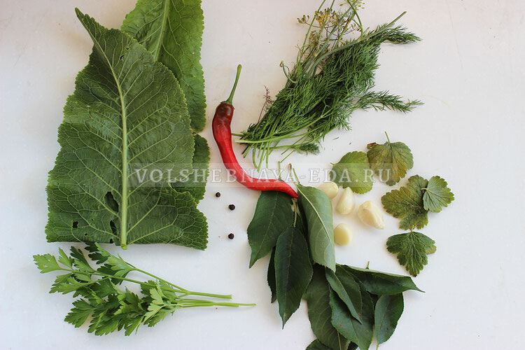 kvasheny ogurci s zelenju 2