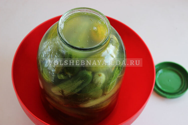 kvasheny ogurci s zelenju 7