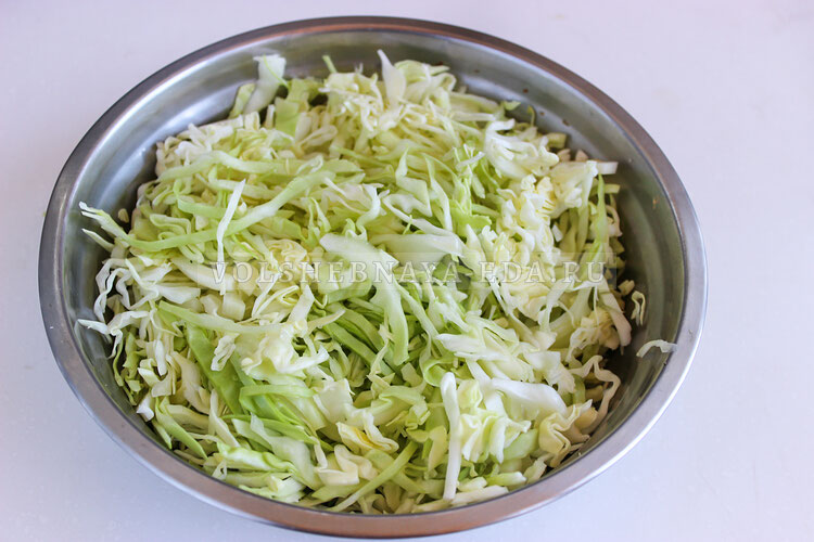salat dnestr 2