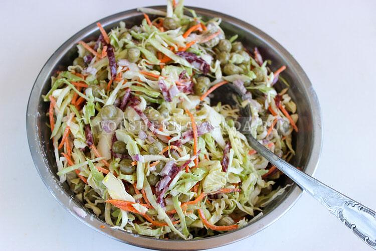salat dnestr 6